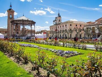 Discover Alcalá de Henares like never before
