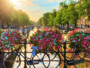 Free walking tour fondamentale di Amsterdam