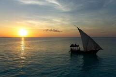 Create unforgettable Memory in Zanzibar City