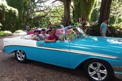Classic Car Tour in Havana