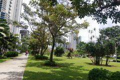 Free Tour - Panama City: modern & tropical