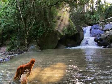 Ecological tour through the sacred rivers of the Sierra Nevada de Santa Marta.