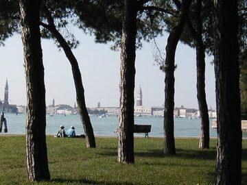 Scopri Venezia nella natura nascosta