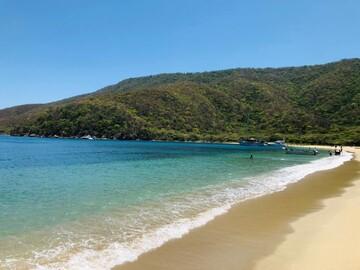 Free Tour Bahia Concha, mágica y al natural