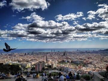 Free walking tour Città Vecchia di Barcellona: il Quartiere Gotico e La Ribera