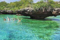 Experience the Beauty of Zanzibar