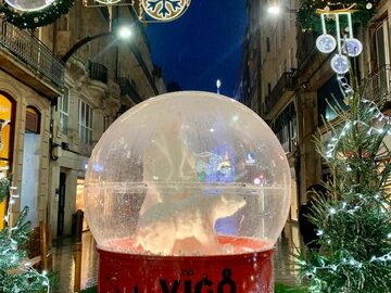 Free Tour Especial de las Luces de Navidad de Vigo