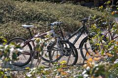 Free Tour Valencia en Bici