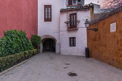 Free Tour  Barrio Santa Cruz, la Judería de Sevilla