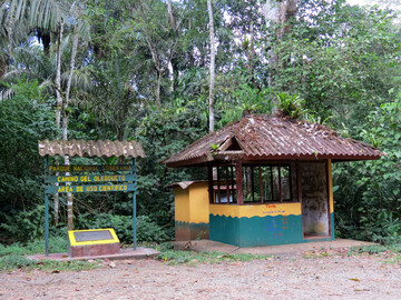 Birdwatching at Soberanía National Park