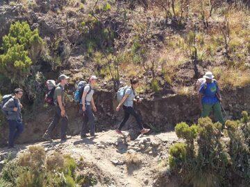 Avventura nel parco nazionale di Arusha
