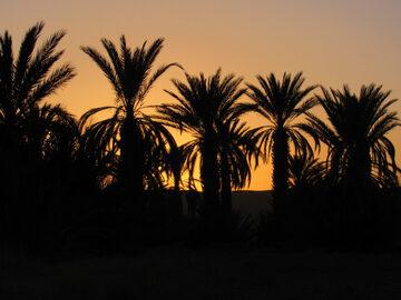moroccan cultures in desert