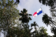Free Tour - Panama City: Urban Expressions and Tropical Gardens