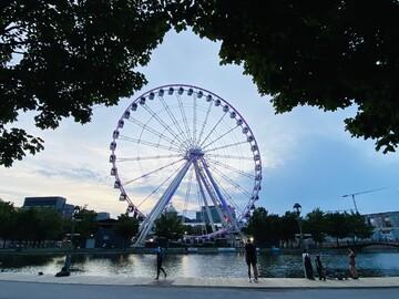 Free Tour Discover the cradle spot of the ancient Montréal