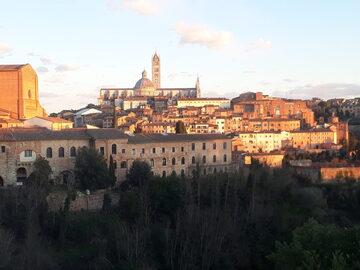 Entdecken Sie Siena mit einem Einheimischen