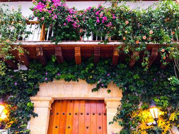 Free walking tour durch die Nachbarschaft von Getsemani