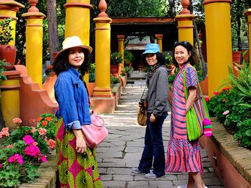 Free Tour through the colorful neighborhood of Coyoacán