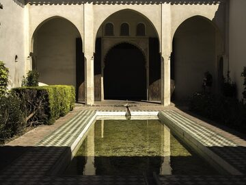 Free tour of the Alcazaba and the Roman Theater