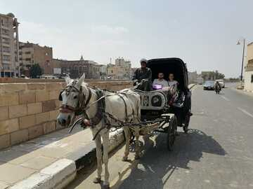 The Mind-blowing Horse Carriage ride in Luxor City