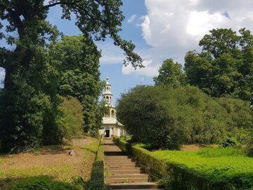 Scopri i tesori naturali di Potsdam con Shinrin Yoku!